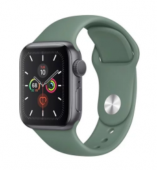 Apple Watch Series 5 44mm Mặt đen dây xanh (Space Cray Aluminum)